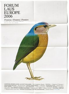 #bird #illustration