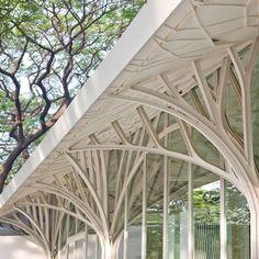 Dezeen - Architect