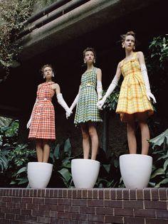 Belles Plantes: Clémentine Deraedt, Shanna Jackway, Eliza Thomas by Michal Pudelka for Numéro #167 October 2015 - Miu Miu Fall 2015