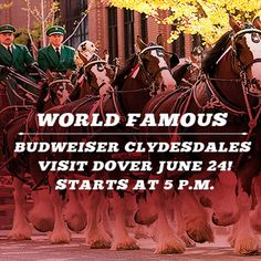View the list of current promotions we have available at Dover Downs Hotel & Casino in Delaware. Vegas Style, Clydesdale, World Famous, Promotion, Las Vegas, Last Vegas