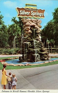 Entrance, Florida's Silver Springs Vintage Florida ☮ re-pinned by http://www.wfpcc.com