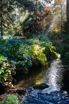 Heavenly holiday homes need nearby beautiful places to visit Bodnant Gardens - The Dell - Conwy, Wales What A Wonderful World, Beautiful World, Beautiful Gardens, Beautiful Places, Beautiful Pictures, Parcs, Amazing Nature, Amazing Art, Awesome