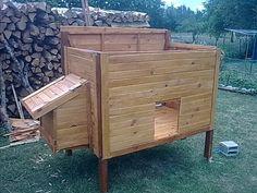 comment construire un poulailler en bois avec des palettes et du lambris