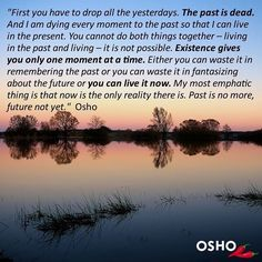 "717 vind-ik-leuks, 6 reacties - OSHO International (@oshointernational) op Instagram: '""...Existence gives you only one moment at a time. Either you can waste it in remembering the past…'"