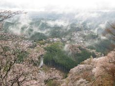 奈良県 吉野町|ニッポン移住・交流ナビ JOIN - 田舎暮らしを応援します -