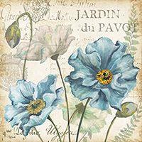 Poppies Histoire Naturelle I <br/> Tre Sorelle Studios