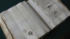 """Medievalist Emir O. Filipovic was flipping through fifteenth century manuscripts at the State Archives in Dubrovnik, Croatia — your average light reading — when he came across something rather remarkable on one of the pages: Feline paw prints."" The 15th century equivalent of a cat walking across a keyboard."
