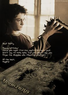 Birthday present from Hagrid