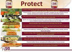 Whole food ingredients! #zurvita #zeal