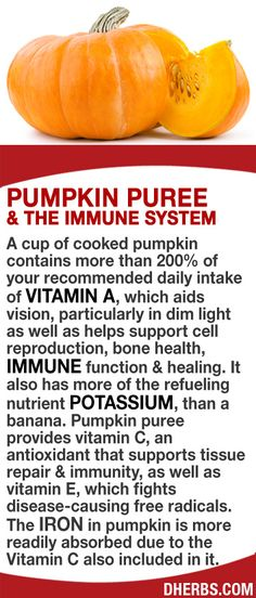 Fall is Pumpkin Season!  Did you know about all of the amazing properties of pumpkin?