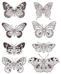 Buy Hand Drawn Butterflies by Artness on GraphicRiver. Set of vector hand drawn butterflies on a white background. Zip file contains fully editable vector file, transp. Butterfly Sketch, Butterfly Tattoo Designs, Butterfly Wings, Monarch Butterfly, Butterfly Wing Pattern, How To Draw Butterfly, Butterfly Tattoo On Hand, Butterfly Outline, Butterfly Stencil
