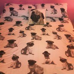 pug bed