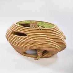In beeld: originele kattenhuizen voor het goede doel