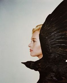"""nightmares filled with flapping wings""  Tippi Hedren describing her week of physicians recommended rest during the filming of The Birds."