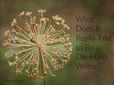 What Does It Really Take to Be a Die-Hard Writer?
