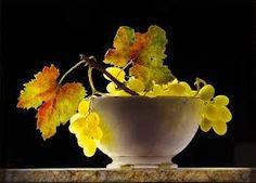 Still life photo, ottorino de lucchi