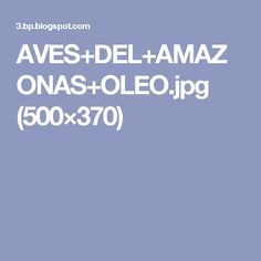 AVES+DEL+AMAZONAS+OLEO.jpg (500×370)