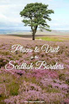 One of the best things about this part of Scotland is that the region is under the radar as far as travel goes. Here are 5 days out in the Scottish Borders.