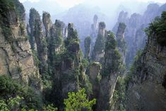 Tianzi Mountains, Zhangjiajie, Hunan Province, China. - War of words: Managers at Zhangjiajie National Forest claim their spectacular sandstone pillars were clearly the inspiration for the 'Hallelujah Mountains' on Pandora, the film's densely forested moon setting