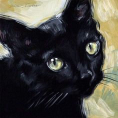 Original oil painting of a black cat, 8 x 8 inches by Diane Irvine Armitage.