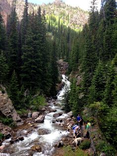Booth Falls, Vail, CO   =  photo by Rachel Bender.