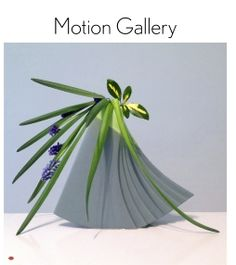 The Motion Gallery