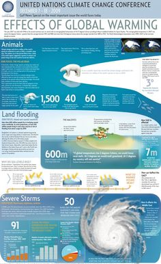 UN Climate Change Conference: Effects of Global Warming infographic) Global Warming Climate Change, Effects Of Global Warming, Global Warming Issues, Earth Science, Science And Nature, Life Science, Science Space, Science Fair, What Is Climate
