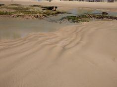 Praia de Boa Viagem, Recife, Brasil. Por Lais Castro.