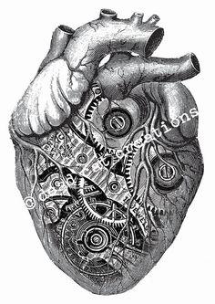 Anatomical Clockwork Heart Valentine Handmade by deadcatcreations