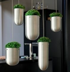 floating garden in the kitchen ! by cristina