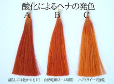 間違いだらけのヘナ!ヘナを洗い流した後、ヘアドライヤーで髪を乾かしてはいけない!