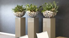 Mooie potten op sokkel the french floral green plant flower arrangement зим Modern Planters, Concrete Planters, Indoor Trees, Indoor Plants, Raised Planter, Planter Pots, Display Pedestal, Cement Crafts, Outdoor Flowers