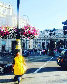 Glowing up in the #London sun with @sliusb. Love! Travel Well #TravelFly! :::::::::::::::::::::::::::::: #PassportLife #BlackGirlsTravel #PassportReady #Travel #BrownGirlsTravel #DoYouTravel #Wanderlust #Fernweh #TravelTheWorld #TravelOn #BlackTravelers #TravelAddict #TravelJunkie #TasteInTravel #LadiesGoneGlobal #LuxeTravel #WellTraveled #InspireToTravel #TravelLife #TravelGram #TravelBetter #IGTravel #WeTravel #Explore #PassionPassport #JetSetting #BlackTravelFeed