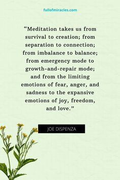 Joe Dispenza Quotes