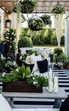Hanging plants, flower box on bench