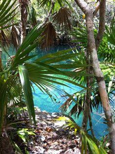 cenote, tulum, mex.