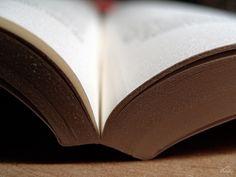 Mieux comprendre les stratégies de lecture des élèves - http://rire.ctreq.qc.ca/2014/08/strategies_lecture/