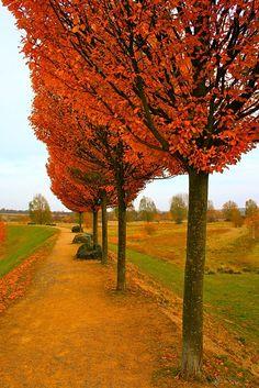 """weza: """" Autumn, Hannover, Germany """""""
