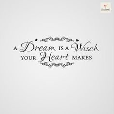 A dream is a wish you heart makes