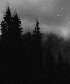 Dark Landscape, Fantasy Landscape, Black Metal, Black And White, Nature Aesthetic, Dark Forest, Solitude, Dark Art, Wall Collage