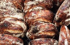 From Chad Robertson and Elisabeth Prueitt, Tartine Manufactory is the biggest…
