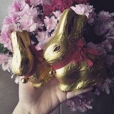 #happy#easter#bunny#gold
