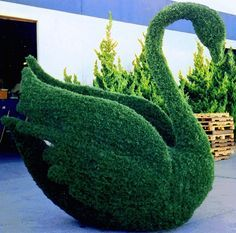 GIANT FAKE BOXWOOD SWAN - Google Search