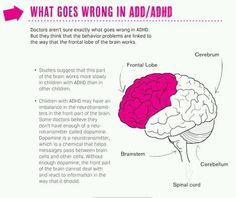 It has been estimated that Attention deficit hyperactivity disorder (ADHD) may occur in as many as 1 out of 7 American children. Here are some of the symptoms. Adhd Odd, Adhd And Autism, Adhd Facts, Adhd Brain, Adhd Help, Adhd Strategies, Attention Deficit Disorder, Adult Adhd, School Psychology