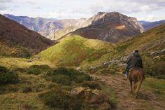 Un paseo idílico a caballo