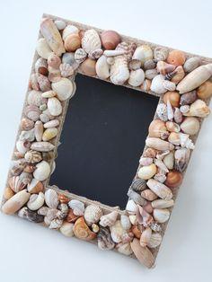 SALE Seashell Mirror - 5 x 7 Florida Shells