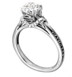 Harley Davidson engagement ring....really???  :)
