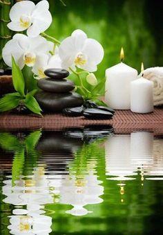 Orquideas - Tabea Dueck - Wallpapers Designs - New Ideas Feng Shui, Zen Wallpaper, Flower Wallpaper, Beautiful Gif, Beautiful Flowers, Zen Pictures, Deco Zen, Zen Room, Zen Meditation