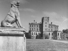 Large Pedestal and Sculpture on Grounds of Gordon Castle Scotland Castles, Scottish Castles, Gordon Castle, Black White Photos, Black And White, Visiting Scotland, Royal Palace, 15th Century, Study Abroad