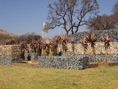 Aloes and Gabions, looks great